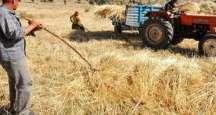 Antakya Ziraat Odası sokağa çıkmada çiftçileri uyardı