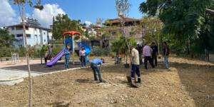 Parklarda ağaçlandırma çalışmaları